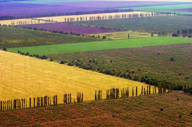 Уряд прийняв програму підтримки фермерства на 2018-2020 роки
