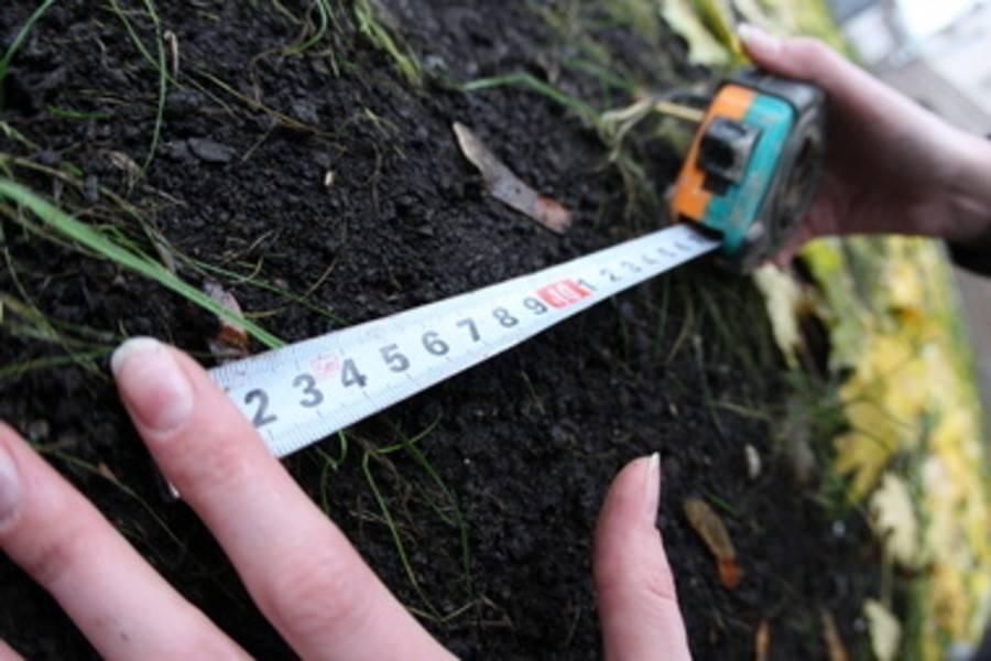 Земельная реформа будет запущена в этом году