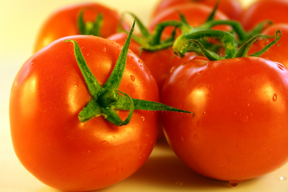 Поздний урожай томатов