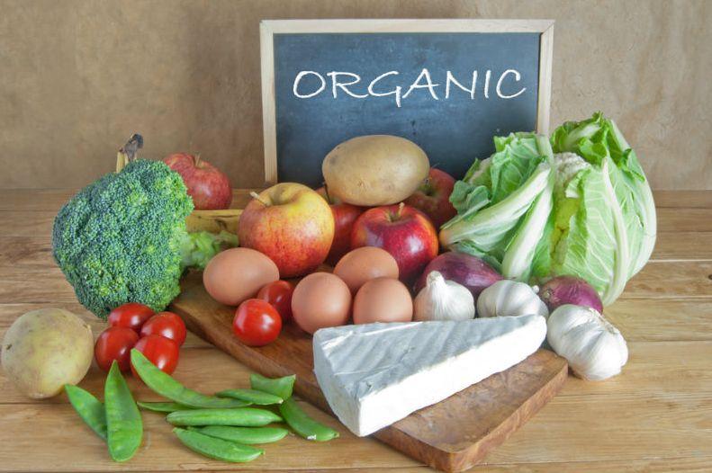 Отличительные черты органических продуктов и особенности их выбора