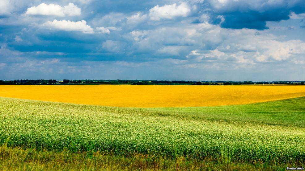 Аграрний комітет Верховної ради: Україна не готова до земельної реформи