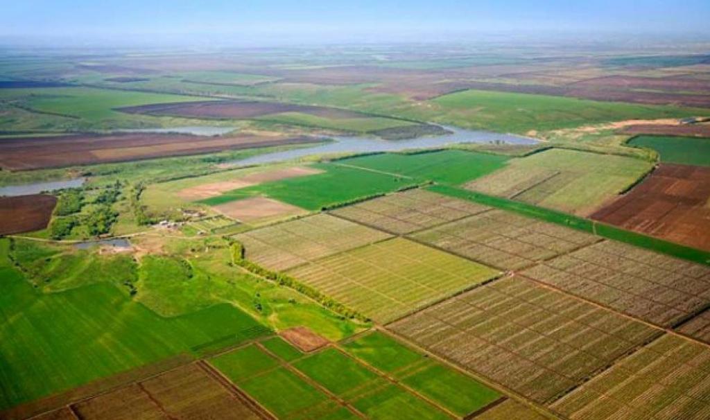 В Украине вступил в силу мораторий на продажу сельхозугодий