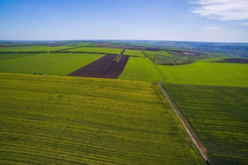 В Украине стала доступна информация о землепользовании