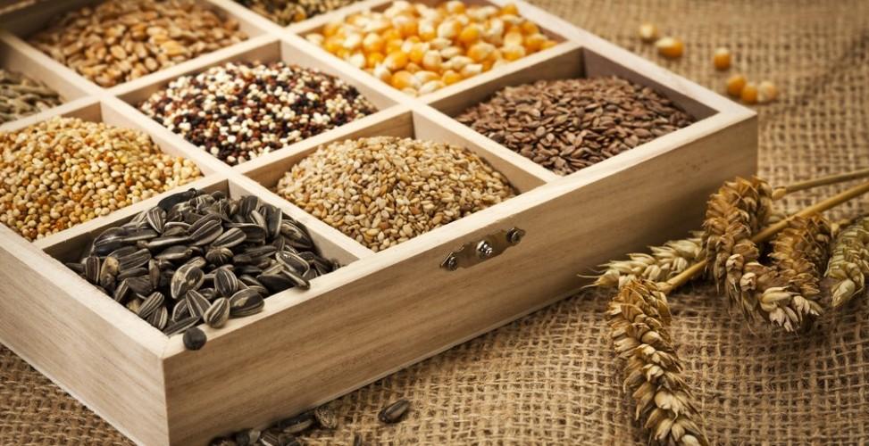 Как самостоятельно заготовить семена для посадки