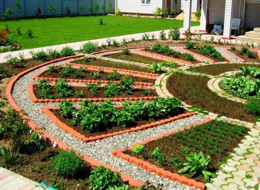 Готовимся к высадке овощей: планируем огород