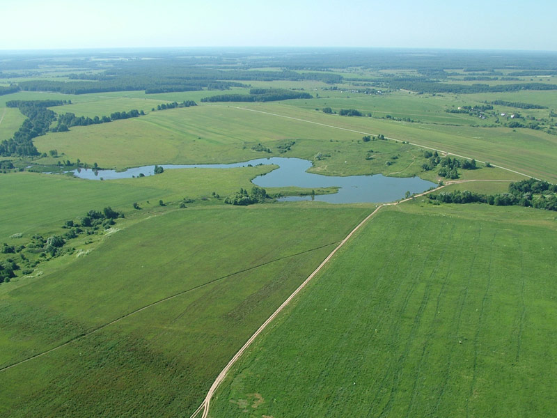В Одеській області планують виставити на аукціон майже 24 тисячі гектарів землі сільськогосподарського призначення